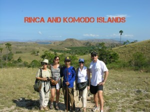 Rinca island and komodo dragon