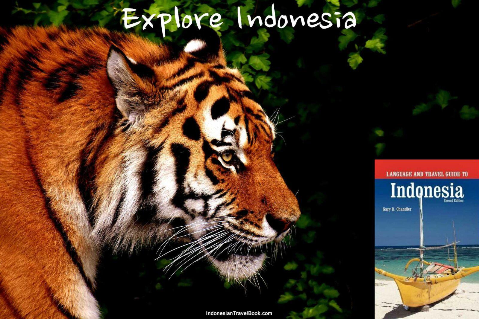 Ecotourism Destinations In Indonesia